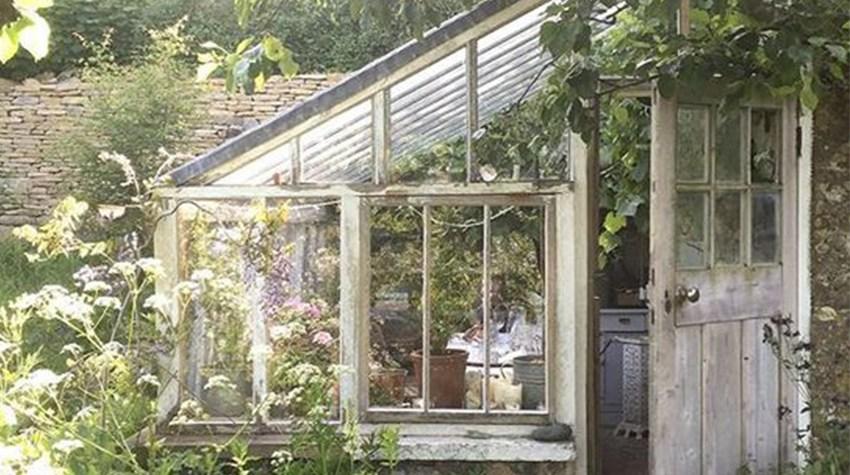 greenhouse mood board