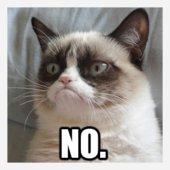 9-best-grumpy-cat-memes-1