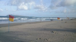 Grey sands
