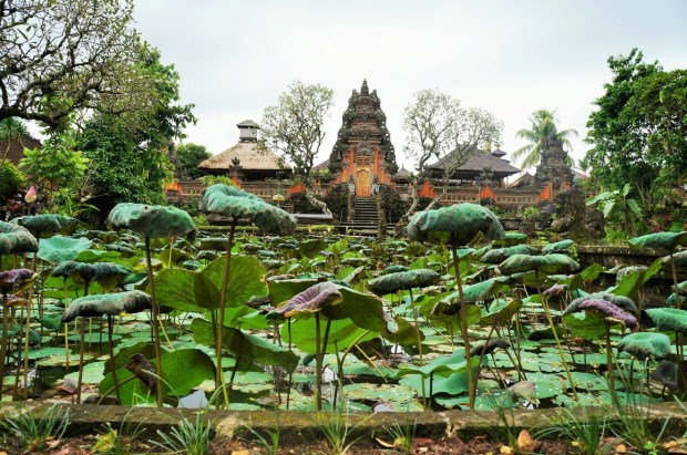 Like Wanderlust em Bali - templo em Ubud