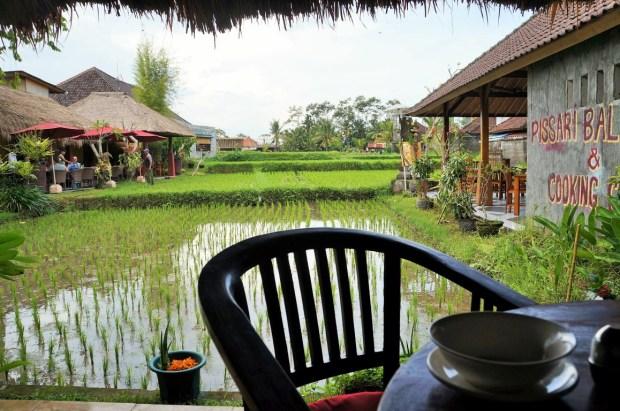 restaurantes imperdíveis em Ubud - campo de arroz