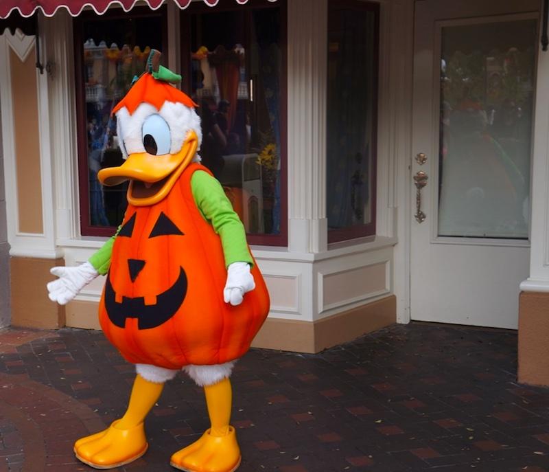 Festa de Halloween na Disney - Donald