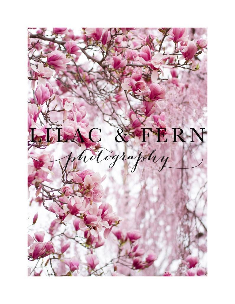 1-Pink Blooms