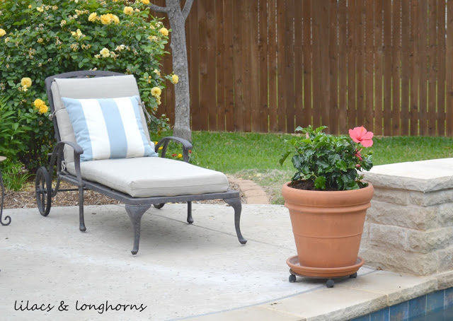 How To Plant In Large Pots {Without Spending A Fortune