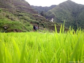 Batad hike3