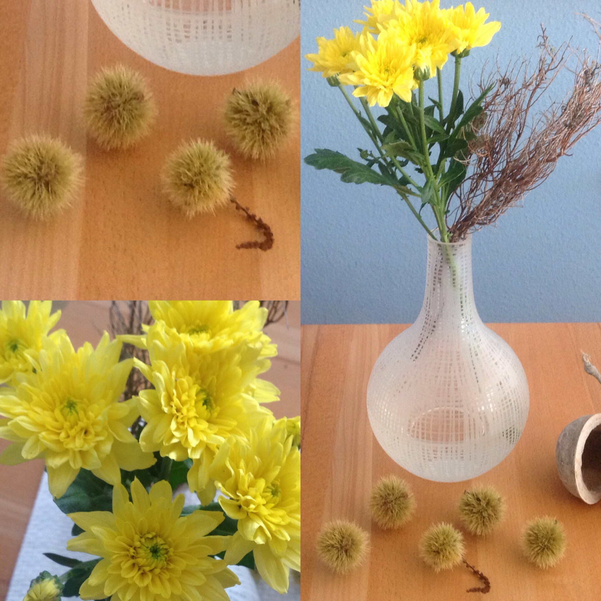 Friday-Flowerday – oder – Ja, ist denn noch Sommer?