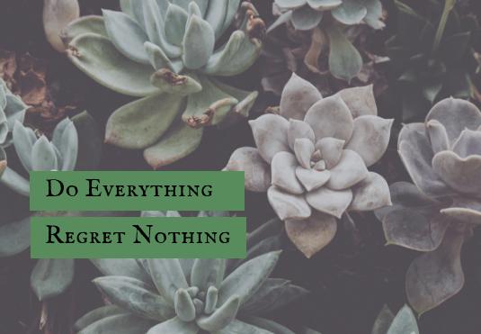 Succulent Simplicity