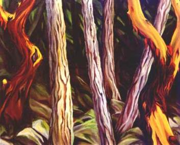 forestdance