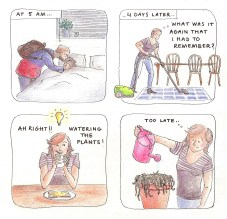 forget to water the plants watering comic cartoon lilian leahy illustrations rotterdam diary draw personal complementary characters