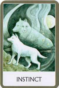 Oráculo de los Chakras -  Instinct - Instinto