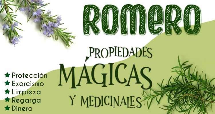 Propiedadesmágicas y curativas del Romero