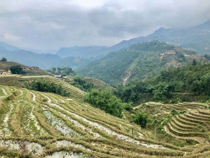 Vietnam – Sapa, trek entre montagnes et rizières