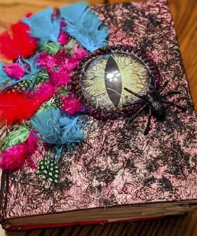 Dragon Eye Feather Witch Book
