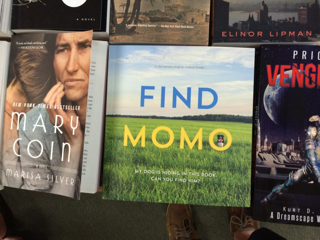 It's a book about a dog. In different places. You have to find him.