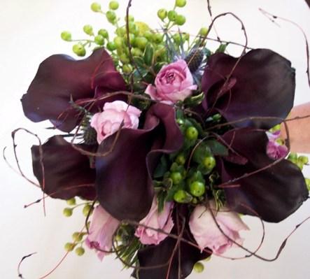 Wine callas & roses