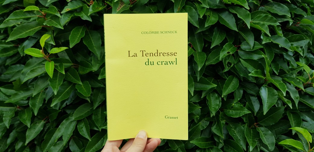 La tendresse du crawl de Colombe Schneck