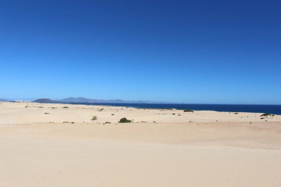 dunes de collajero desert - fuerteventura