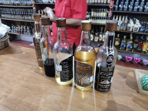Dégustation de téquila artisanale