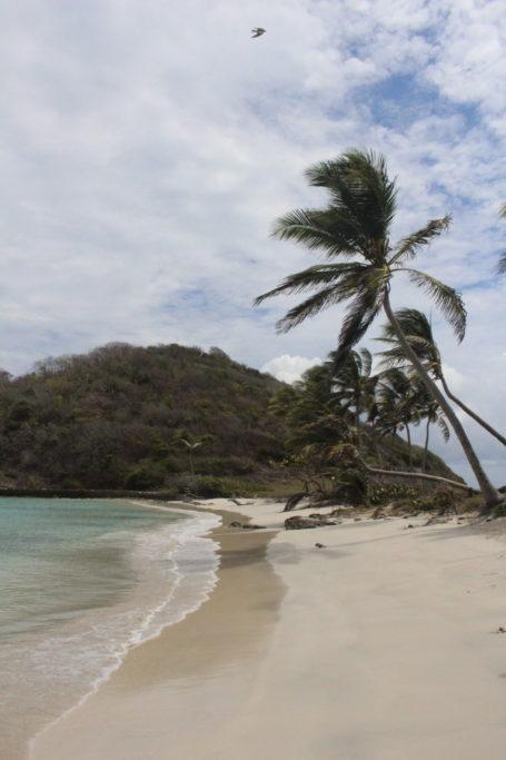 plage mayreau iles grenadines