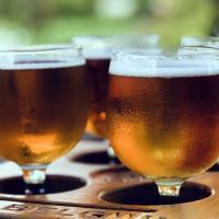 Birrifici artigianali tra Merano e Bolzano: dove bere buona birra in Trentino Alto Adige