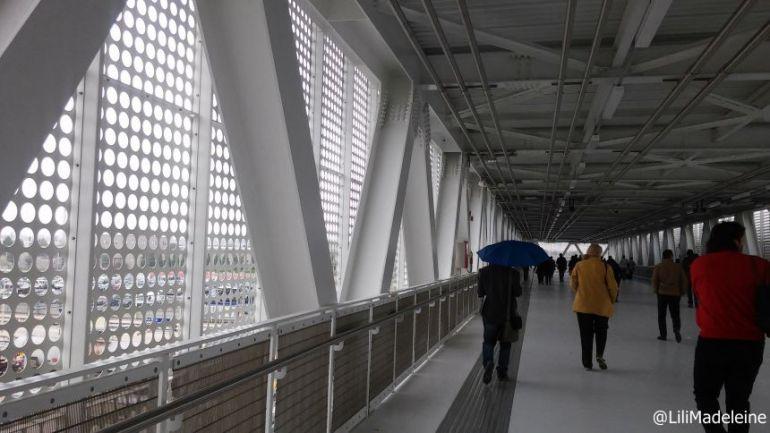 Expo galleria
