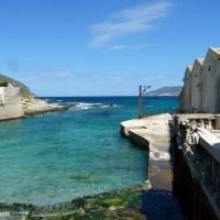 La meravigliosa storia della tonnara Florio di Favignana