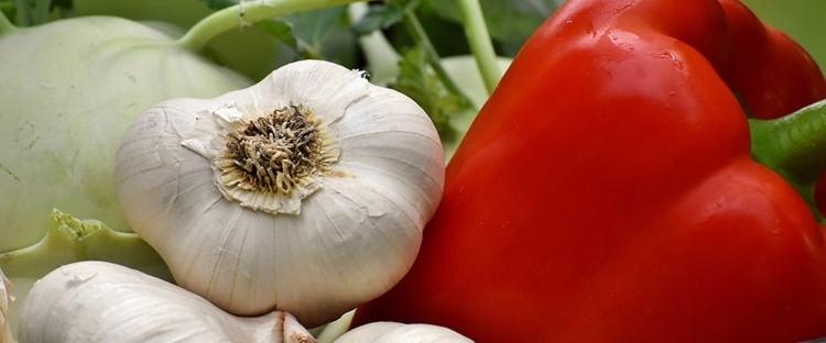 mercati agricoli milano luglio