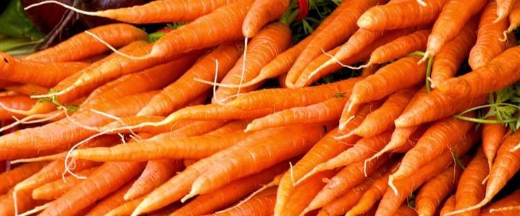 mercati agricoli milano ottobre