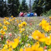 Picnic in Val di Non tra prati, laghi, boschi e gli esperimenti del Muse di Trento