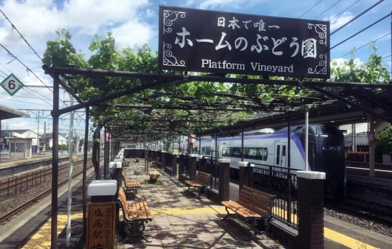 Vigna in stazione Shiojiri Giappone