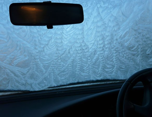 frozen-frosted-cars-221__605