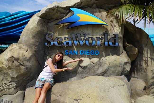 SeaWorld ~ San Diego