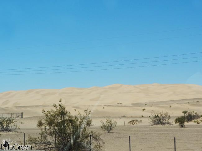 Desert, Mexico