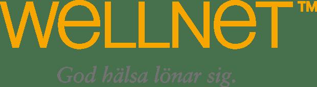 Wellnet Lilla Studion