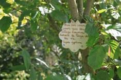 Le jardin des lianes - citation