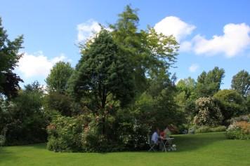 Le jardin des lianes - massifs
