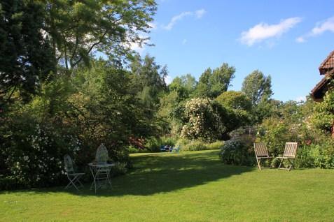 Le jardin des lianes - vue d'ensemble