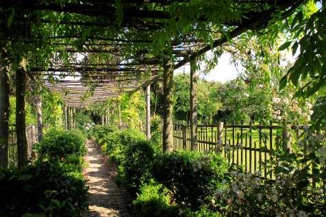 Les jardins de Maizicourt - couloir végétal