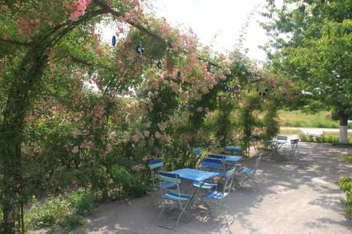 jardin mosaïc - terrasse fleurie