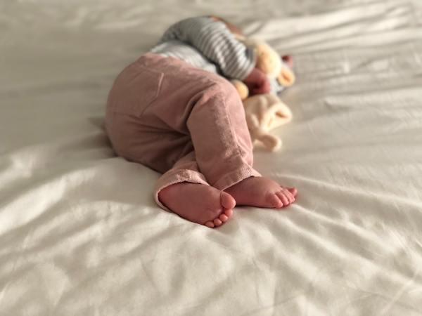 Søvnkurs med Lille Lab og SoveKarin