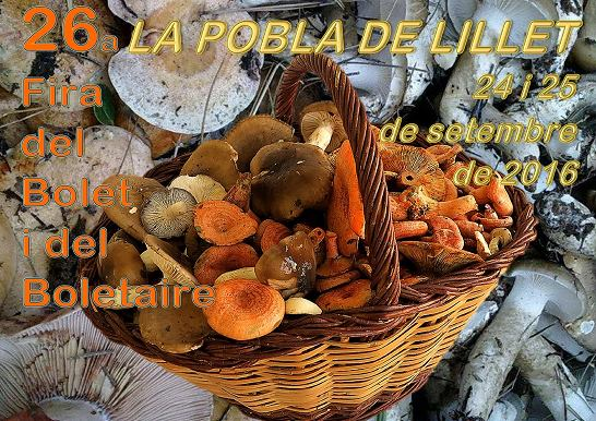 20160924-fira-del-bolet-i-del-boletaire-1