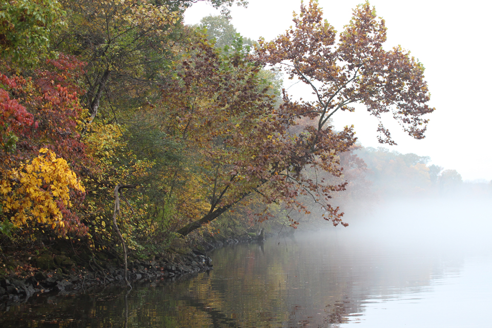 October Fishing Report