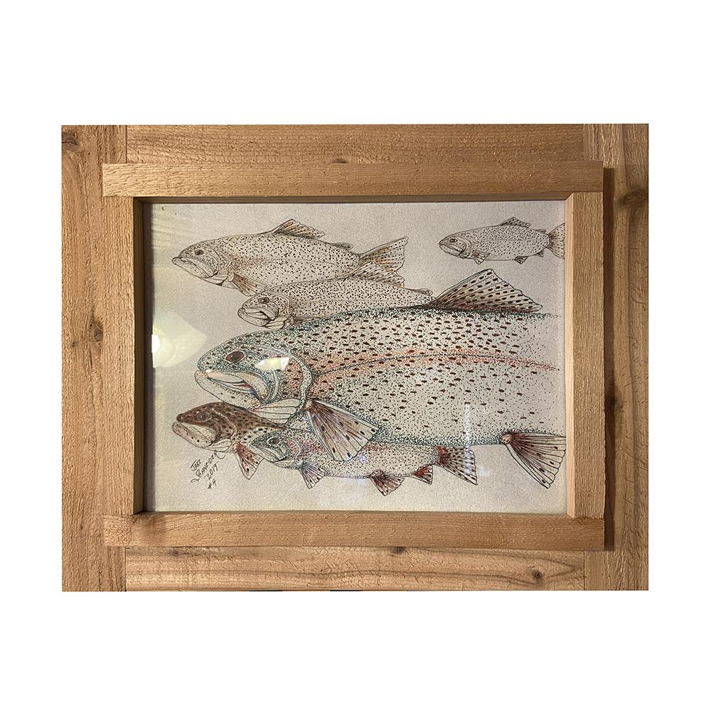 Jake Schneider - trout drawing framed