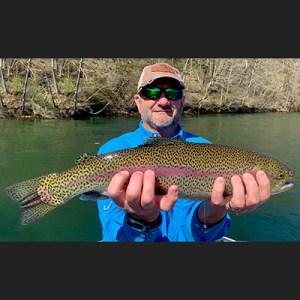 David Wilkinson rainbow trout