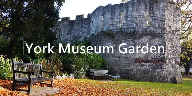 約克免費景點。約克博物館花園 羅馬帝國遺跡裡找一百萬隻松鼠