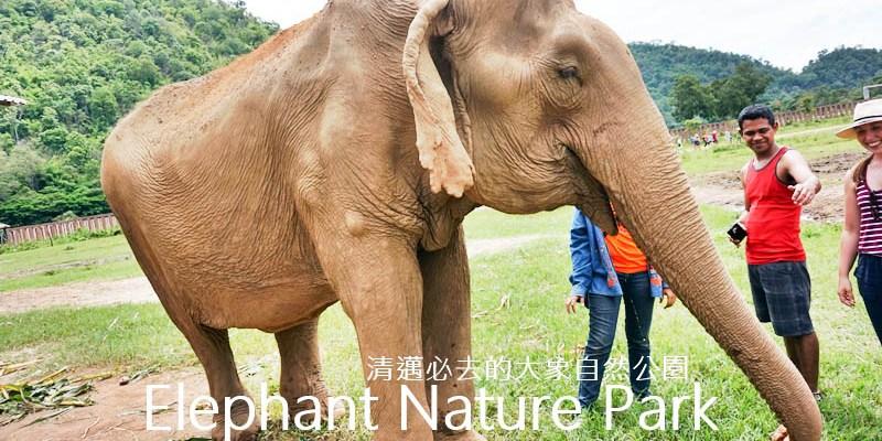 【清邁大象自然公園】泰國清邁必去景點Elephant Nature Park
