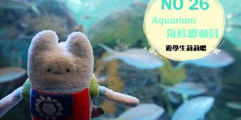 ✈ 多倫多遊學 ✈ 水族館海底總動員 鯊魚水母和尼莫 復活節擠成沙丁魚