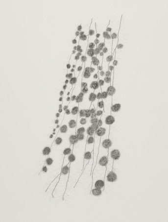 graphite-drawing-on-film-for-evidence-of-doubt-756x1000