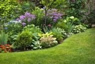 Create a lush garden