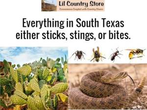 sticks-stings-bites
